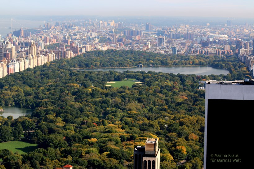 Central Park_01