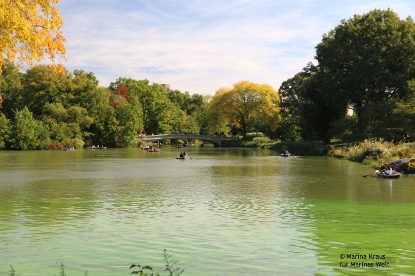 Central Park_05