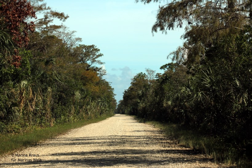 Big Cypress National Park_03