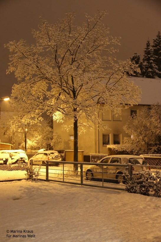Winterbilder_01