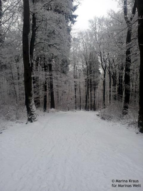 Winterbilder_02