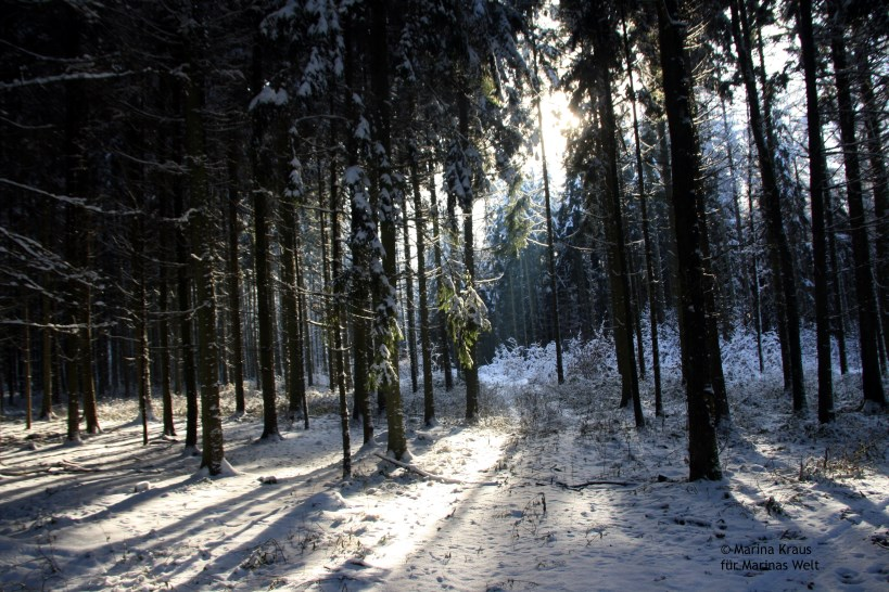 Winterbilder_09