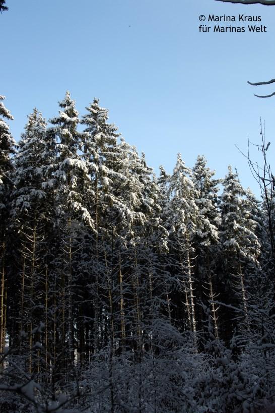 Winterbilder_10